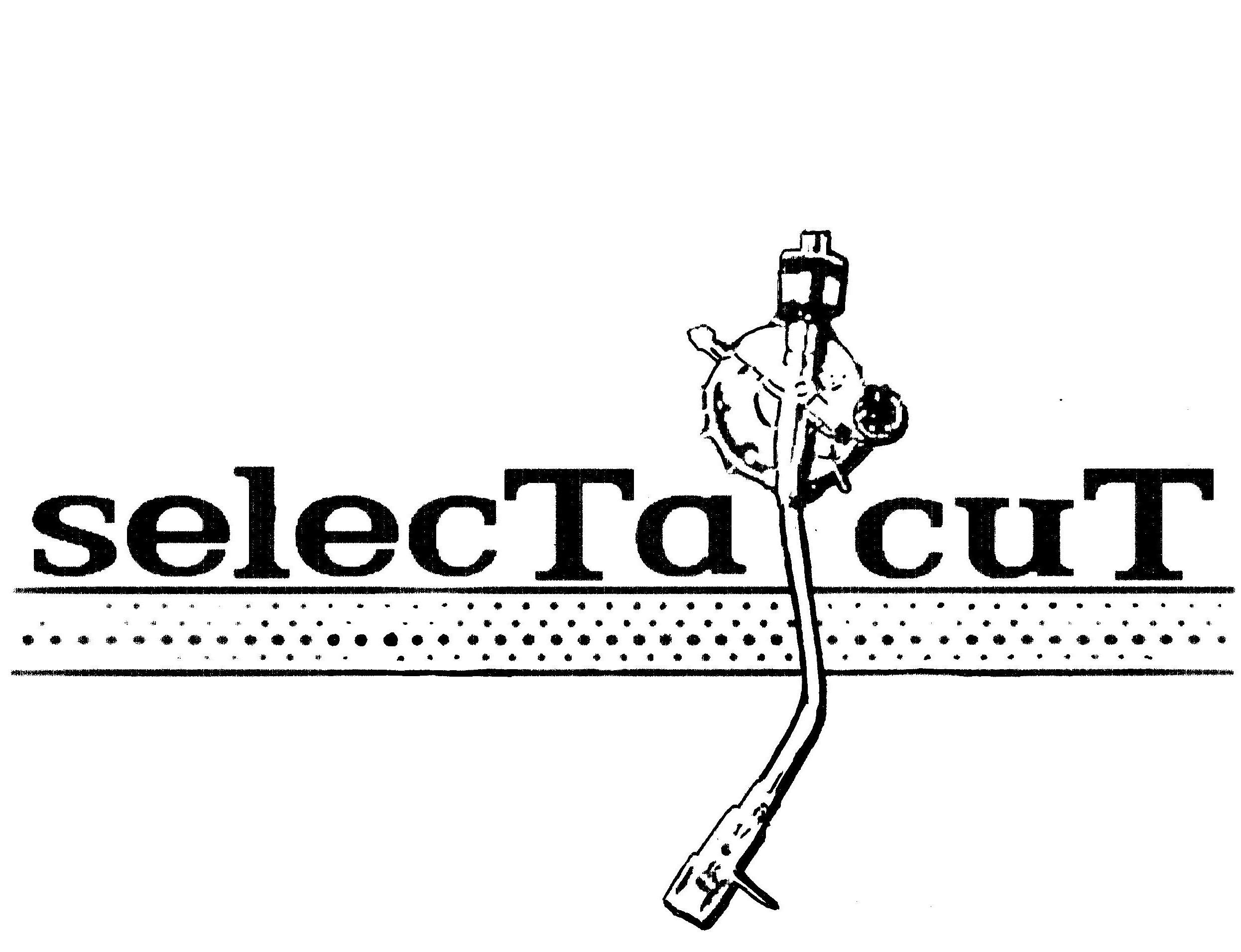 dubmusic.com